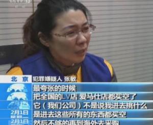 中国红十字会、e租宝、中晋系 背后都有个炫富女