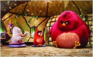 《愤怒的小鸟》高清3D电影资源剧情分享
