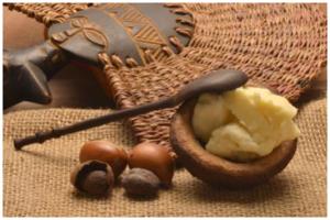 今天给大家推荐一款护肤神器——乳木果油