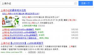 蜘蛛池程序引流让关键词霸屏大型网站